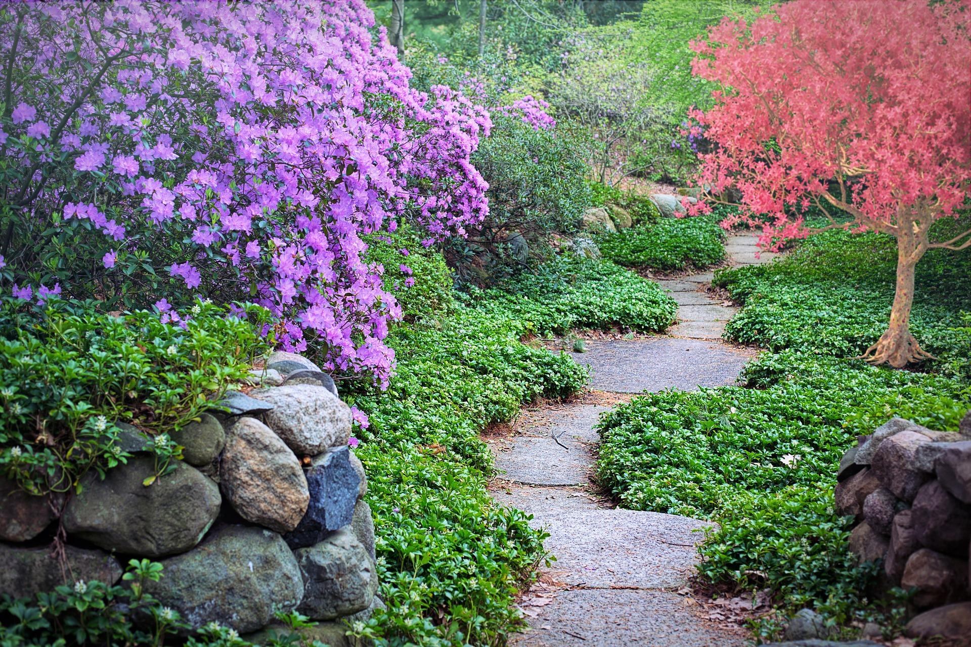 Dein innerer Garten